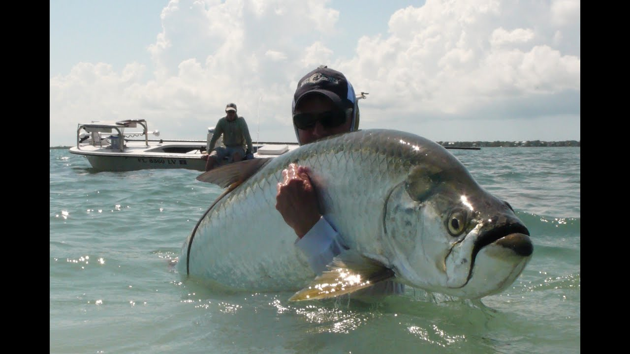 5 Best Places To Watch A Thunderstorm moreover Sanibel Fishing Charters Gator Trout further 2011 09 01 archive also Suuntogekkodive puter likewise . on florida fishing