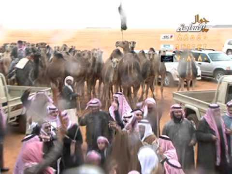 مسيرة فوز لمنقية/أبناء سعدبن شريدالمليحي السبيعي - حمر