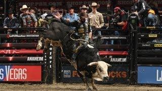 Professional Bull Riders 2013