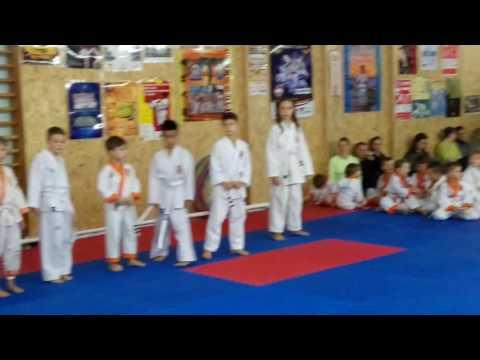 Аттестационный экзамен 06.11.2016 г. по каратэ в клубе Тигренок ч. 2