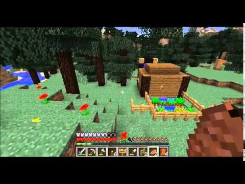 Talx plays: Minecraft! ep 10- Porkface