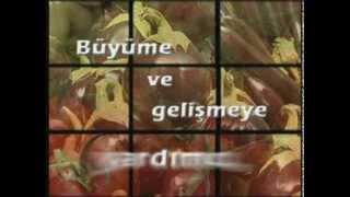 010 – Sebzeler ve Meyveler