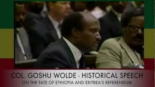 Colonel Goshu Wolde - Historical Speech