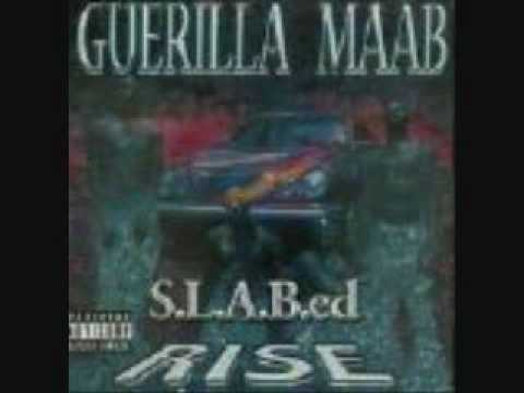 Guerilla Maab - Problems