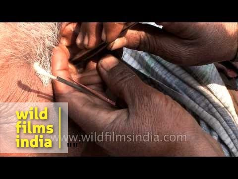 Weird jobs in India: ear cleaning on a sidewalk