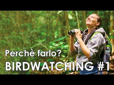 Video-corso di birdwatching #1 - Perché farlo?