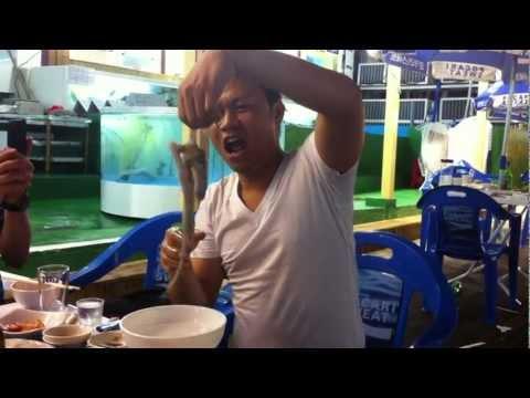 Man eating alive Octopus [HD] - Ăn bạch tuộc sống
