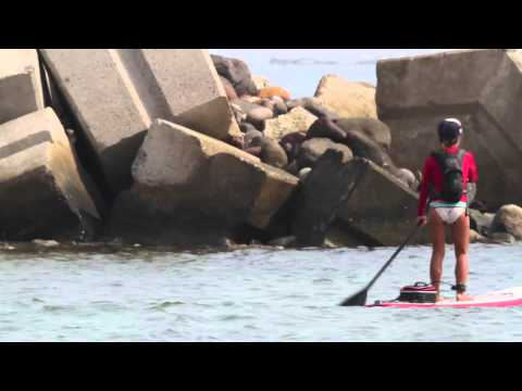 DEEXTR Stand Up Paddle Veracruz