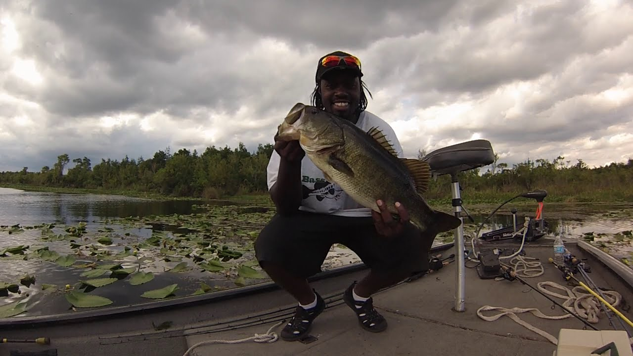 bass fishing frogging at lake griffin state park youtube