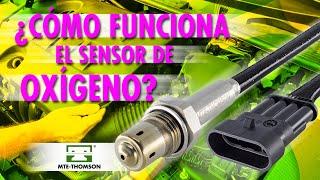 Cómo Funciona el Sensor Oxígeno?
