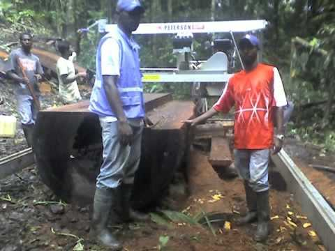 Portable Sawmilling in the Colombian Jungle with a Peterson Swingblade