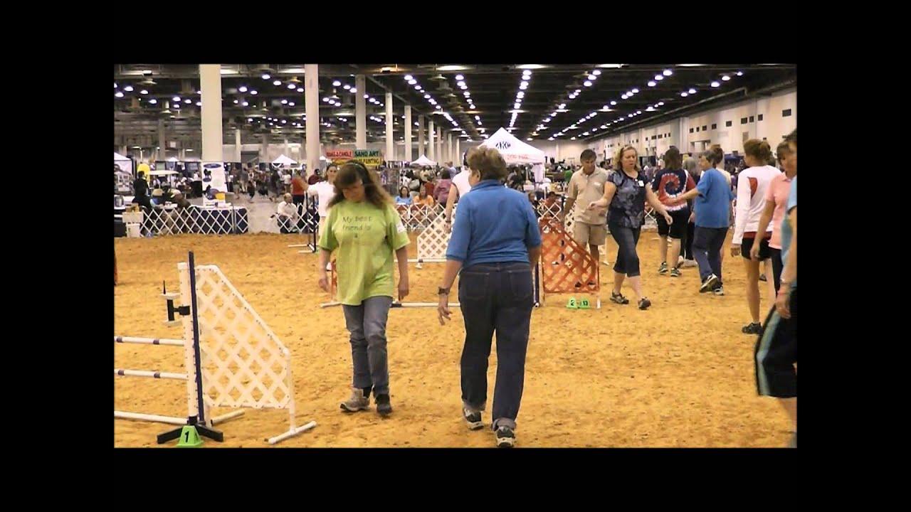 how to build an agility dog walk