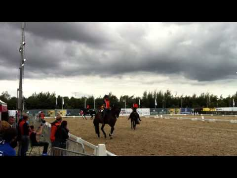 Dutch team training at the 2013 European Dressage Championships