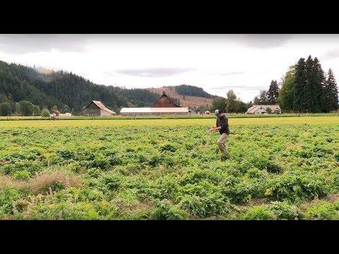 Mountain Rose Herbs is Zero Waste Certified