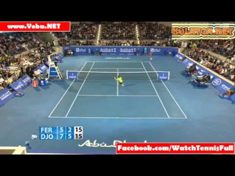 Novak Djokovic v David Ferrer Abu Dhabi Mubadala World Tennis Champion Final higlights-2013