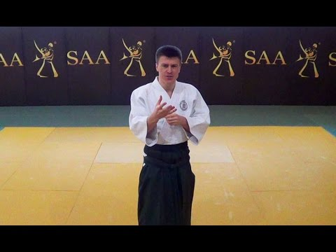 Aikido as a System of Interconnected Techniques