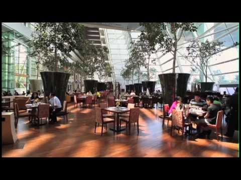 Marina Bay Sands 24/7: Resort With a Difference