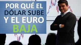 Por qué el Euro baja y el Dólar sube?