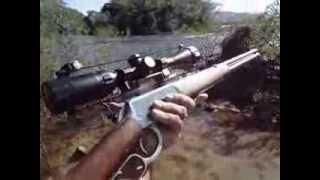 CARABINA PUMA .38 TAURUS COM LUNETA 3x9x40 Tasco