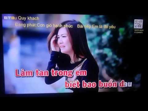 Cơn gió hạnh phúc (karaoke)