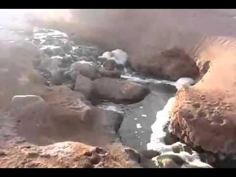 بالفيديو : مياه الواد الحار لزاكورة تهدد التنوع البيولوجي والبيئي لواد درعة