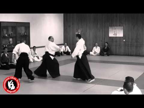 Instruktorski Aikido Seminar 30 06 2013
