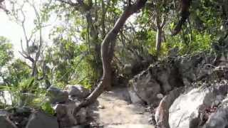 This video captures a walk on the Paya Trail from