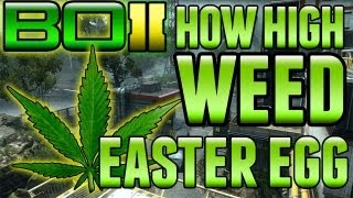 "BO2 ""How High Marijuana / Weed Easter Egg"" On Drone"