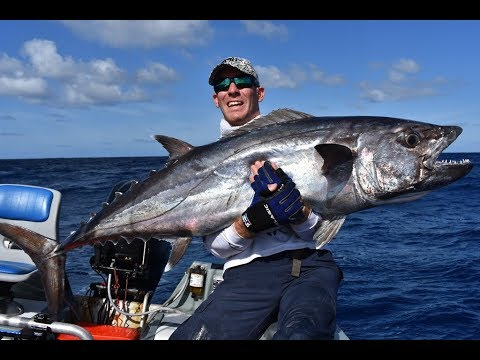 Wreck Reef 2017 on Big Cat Reality Charters