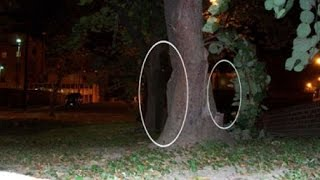 Real Shadow People Caught On Camera