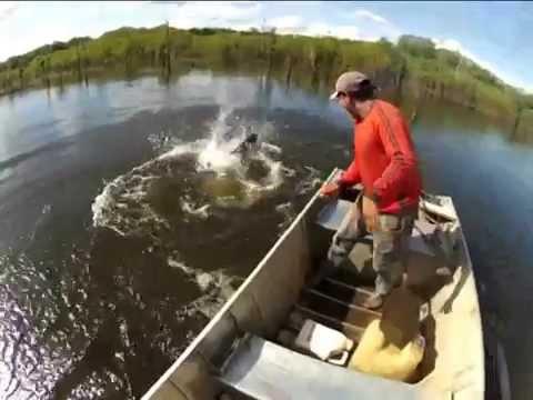 Índios Xingu pesca