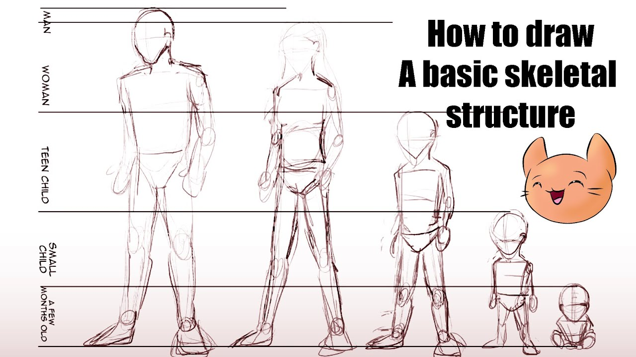 Manga Character Design Pdf : Drawing manga tutorial lesson basic skeletal