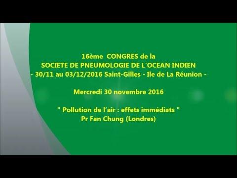 Pollution de l'air - effets immédiats - Pr Fan Chung (Londres)