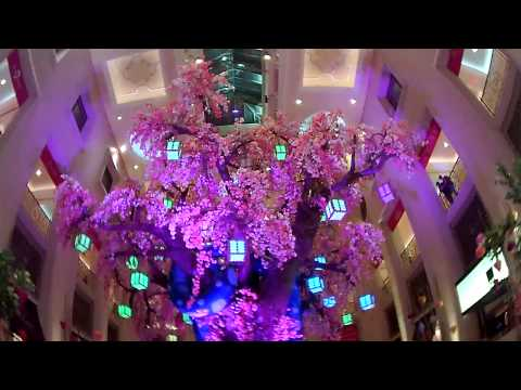 Chinese New Year 2013 蛇 Palazzo Las Vegas Year Of The Snake 1-26-13
