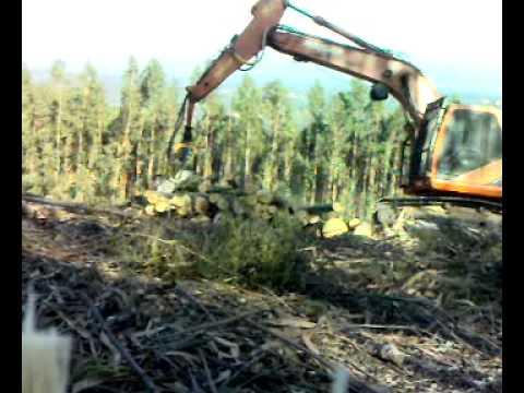 Maquinas Florestais-Mortágua Parte 1