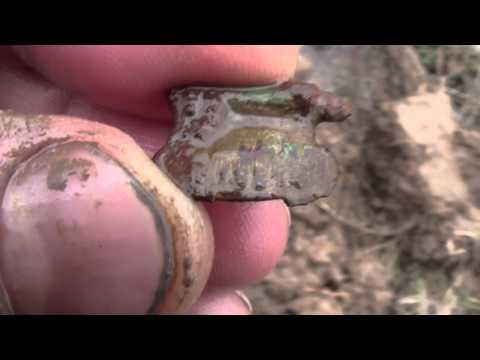 Поиск монет, весна 2013