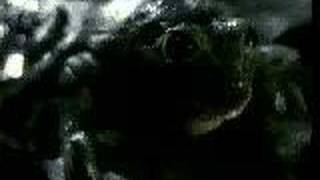 Original Budweiser Frogs Commercial