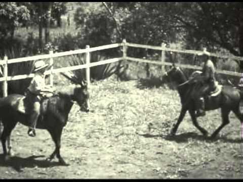 Mangalarga Marchador - História da Raça - Ricardo Romullo