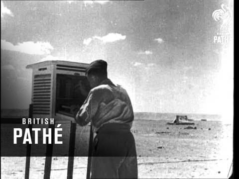 Weather In The Desert Aka Meteorological Works Issue Title - Right As Rain (1941)