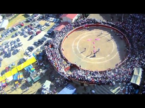 Sketchy Demo Jump Into Bull Fighting Ring