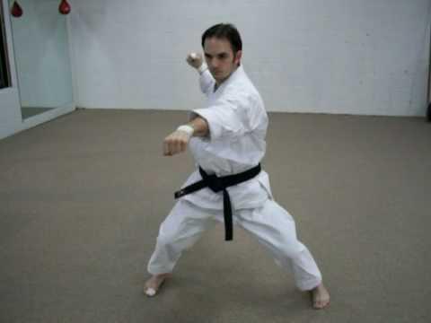Basic Karate Moves No Basics  No Karate
