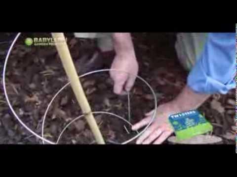 Tuteur twister youtube - Tuteur tomate spirale leclerc ...