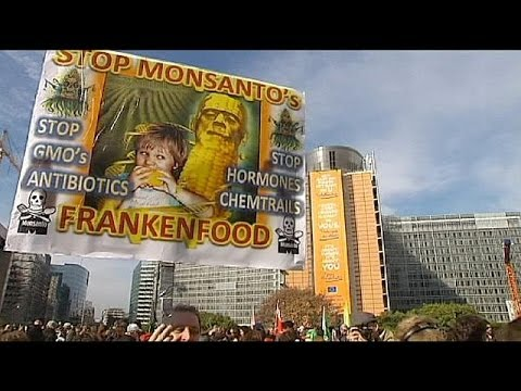 Second global day of protest against Monsanto over GM food