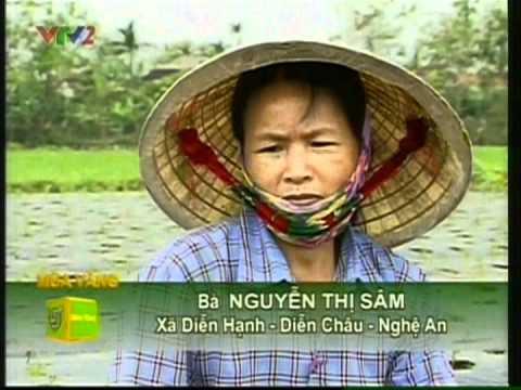 Cỏ ngọt Á Châu_Bạn của nhà nông VTV2 02/05/2012