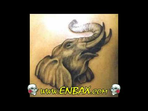 Tattoo Images Animal and Pet