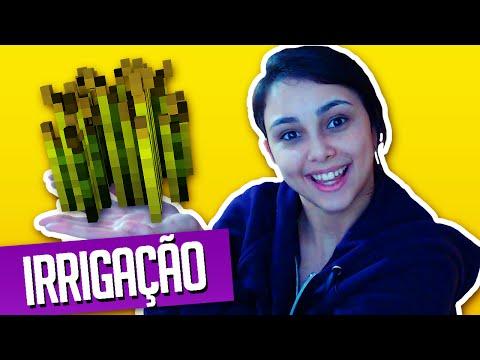 Minecraft: Caspitola #15 - Irrigação, nenha esta desempregada?