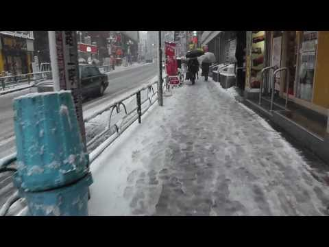 Snow in Tokyo! (February 2014)