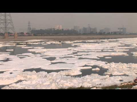 River Yamuna, only filth and waste