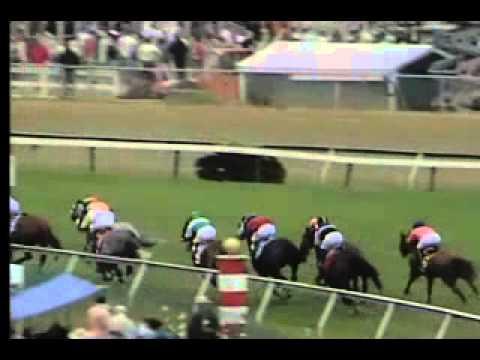Vidéo de la course PMU THE GALLORETTE HANDICAP