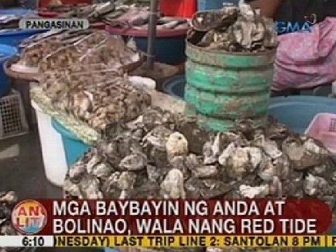 UB: Mga baybayin ng Anda at Bolinao sa Pangasinan, wala nang red tide